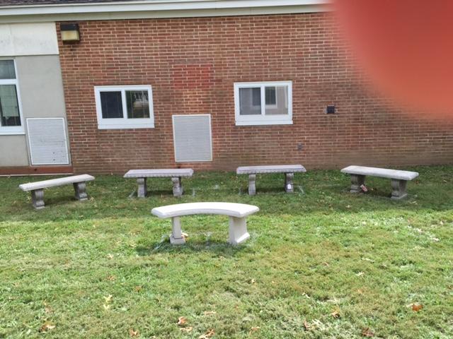 Bird S benches