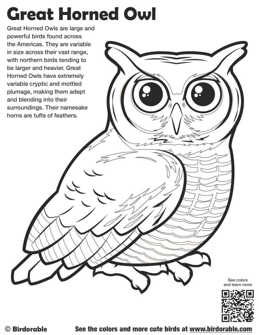 birdorable-great-horned-owl-coloring-page