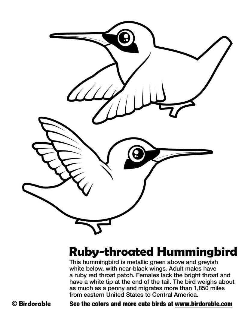 birdorable-ruby-throated-hummingbird-coloring-page