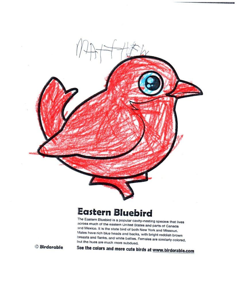 matthew-kindergarten